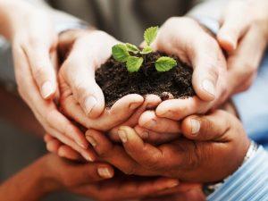 nurture_startups_sl9ut